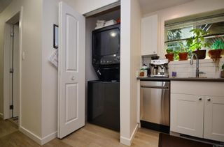 Photo 27: 3640 Blenkinsop Rd in : SE Maplewood House for sale (Saanich East)  : MLS®# 879297