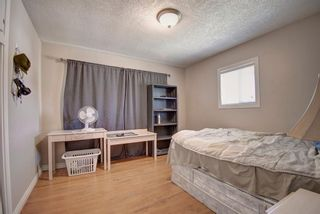 Photo 11: 503 35 Street NW in Calgary: Parkdale Detached for sale : MLS®# A1115340