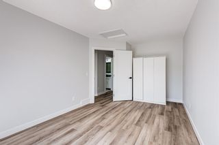 Photo 18: 87 Applebrook Circle SE in Calgary: Applewood Park Detached for sale : MLS®# A1132043