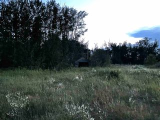 Photo 5: TWP RD 621 RGE RD 243: Rural Athabasca County Rural Land/Vacant Lot for sale : MLS®# E4256601