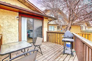 Photo 35: 1137 Berkley Drive NW in Calgary: Beddington Heights Semi Detached for sale : MLS®# A1136717