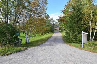 Photo 3: 7150 4th Concession Rd in New Tecumseth: Rural New Tecumseth Freehold for sale : MLS®# N5388663