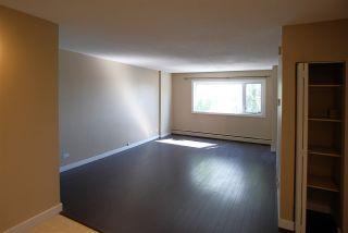 Photo 13: 207 9710 105 Street in Edmonton: Zone 12 Condo for sale : MLS®# E4264531