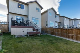 Photo 30: 34 PANORA View NW in Calgary: Panorama Hills Detached for sale : MLS®# A1027248
