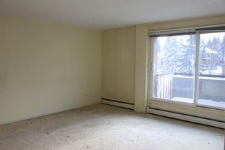 Photo 5: 404 903 19 Avenue SW in Calgary: Lower Mount Royal Apartment for sale : MLS®# A1094813