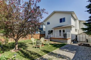 Photo 30: 55 Thornbird Way SE: Airdrie Detached for sale : MLS®# A1114077