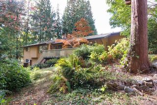 Photo 19: 8679 Forest Park Dr in NORTH SAANICH: NS Dean Park House for sale (North Saanich)  : MLS®# 772597