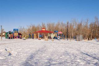 Photo 26: 314 151 EDWARDS Drive in Edmonton: Zone 53 Condo for sale : MLS®# E4225617