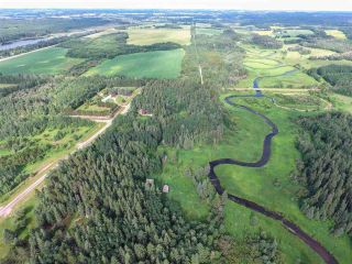 Photo 9: Pinebrook Block 1 Lot 2: Rural Thorhild County Rural Land/Vacant Lot for sale : MLS®# E4171871