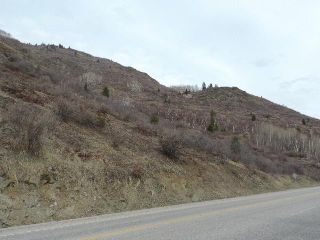 Photo 4: SL 34 HIGHWAY 3B in Montrose: Vacant Land for sale : MLS®# 2459725