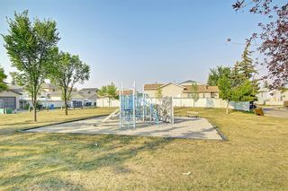 Photo 46: 25 Martinview Crescent NE in Calgary: Martindale Detached for sale : MLS®# A1107227