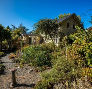 Photo 25: 951 Jasmine Ave in Saanich: SW Marigold House for sale (Saanich West)  : MLS®# 886878