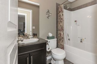 Photo 27: 2 NORWOOD Close: St. Albert House for sale : MLS®# E4241282