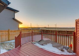 Photo 47: 150 AUTUMN Circle SE in Calgary: Auburn Bay Detached for sale : MLS®# A1089231