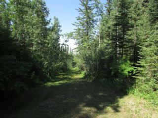 Photo 12: 115 5241 Twp Road  325A: Sundre Detached for sale : MLS®# A1125552