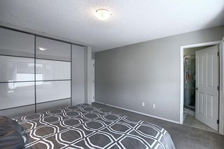 Photo 22: 2115 24 Avenue NE in Calgary: Vista Heights Detached for sale : MLS®# A1018217