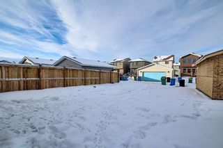 Photo 39: 66 Redstone Road NE in Calgary: Redstone Detached for sale : MLS®# A1071351
