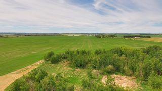 Photo 31: 55130 Rge. Rd. 265: Rural Sturgeon County House for sale : MLS®# E4248279