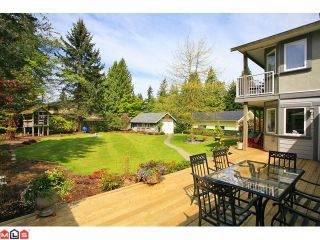Photo 9: 4637 198A Street in Langley: Langley City House for sale : MLS®# F1112685