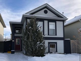 Main Photo: 108 Copperfield Manor SE in Calgary: Copperfield Detached for sale : MLS®# A1068432