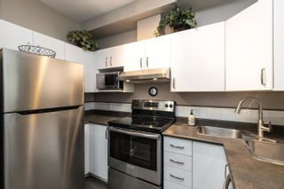 """Photo 8: 418 20200 56 Avenue in Langley: Langley City Condo for sale in """"The Bentley"""" : MLS®# R2612612"""