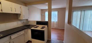Photo 22: E 1215 44 Street SE in Calgary: Forest Lawn Row/Townhouse for sale : MLS®# A1104267