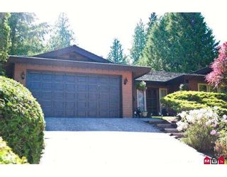 """Photo 1: 4671 204TH Street in Langley: Langley City House for sale in """"MOSSEY ESTATES"""" : MLS®# F2911498"""
