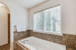 Photo 31: 18 Copperfield Crescent SE in Calgary: Copperfield Detached for sale : MLS®# A1141643