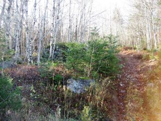 Photo 2: Lot Highway 107 in West Petpeswick: 35-Halifax County East Vacant Land for sale (Halifax-Dartmouth)  : MLS®# 202114068