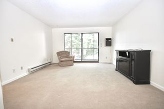 Photo 6: 210 32910 Amicus Place in Abbotsford: Central Abbotsford Condo for sale