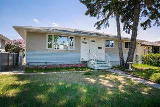Main Photo: 4520 Greenview Drive NE in Calgary: Greenview Detached for sale : MLS®# A1115206