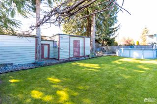 Photo 19: 11677 STEEVES Street in Maple Ridge: Southwest Maple Ridge House for sale : MLS®# R2569720