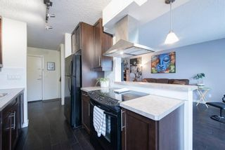 Photo 11: 302C 4455 Greenview Drive in Calgary: Greenview Apartment for sale : MLS®# A1065652