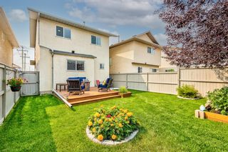 Photo 38: 173 Martinglen Way NE in Calgary: Martindale Detached for sale : MLS®# A1144697