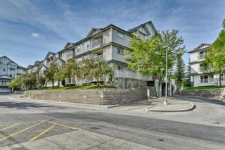 Photo 2: 210 11 Somervale View SW in Calgary: Somerset Apartment for sale : MLS®# A1153441
