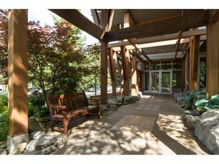 """Photo 19: 317 5700 ANDREWS Road in Richmond: Steveston South Condo for sale in """"Rivers Reach"""" : MLS®# R2192106"""