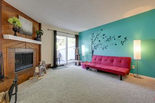 Photo 19: 5206 57 Street: Beaumont House for sale : MLS®# E4253085