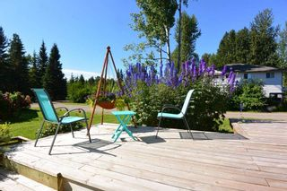Photo 31: 1562 COTTONWOOD Street: Telkwa House for sale (Smithers And Area (Zone 54))  : MLS®# R2481070
