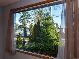Photo 16: 800 Alder St in CAMPBELL RIVER: CR Campbell River Central House for sale (Campbell River)  : MLS®# 747357