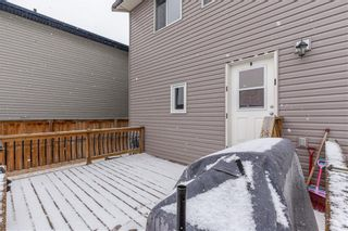 Photo 29: 550 LUXSTONE Place SW: Airdrie Detached for sale : MLS®# C4293156