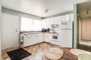 Photo 12:  in Edmonton: Zone 22 House for sale : MLS®# E4254166