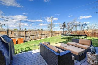 Photo 44: 420 Templeby Place NE in Calgary: Temple Detached for sale : MLS®# A1107183