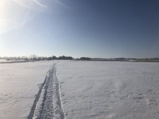 Photo 9: 253 TWP RD 610: Rural Westlock County Rural Land/Vacant Lot for sale : MLS®# E4191859