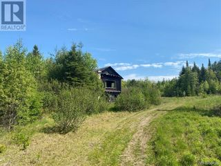 Photo 35: 74.62 Acres Route 127 in Bayside: Vacant Land for sale : MLS®# NB058351
