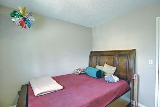 Photo 17: 217 Templemont Drive NE in Calgary: Temple Semi Detached for sale : MLS®# A1120693