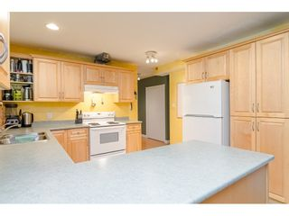 Photo 26: 11128 CALEDONIA Drive in Surrey: Bolivar Heights House for sale (North Surrey)  : MLS®# R2492410