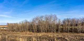 Photo 11: 510 Edgar Avenue W: Rural Foothills County Commercial Land for sale : MLS®# A1084117