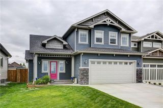 Photo 33: 25 Havenfield Drive: Carstairs Detached for sale : MLS®# A1061400