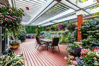 Photo 16: 23831 ZERON Avenue in Maple Ridge: Albion House for sale : MLS®# R2095484