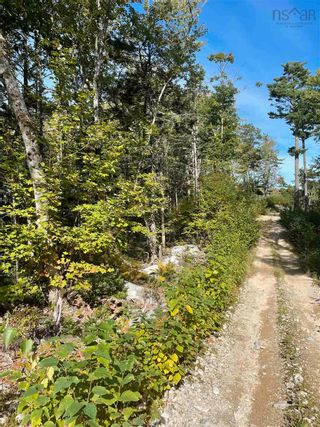 Photo 6: Lot 3 103 Highway in Birchtown: 407-Shelburne County Vacant Land for sale (South Shore)  : MLS®# 202125569